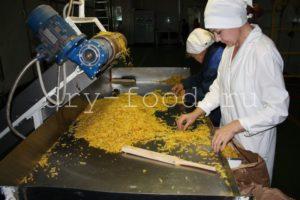 Прозводство сушеного картофеля