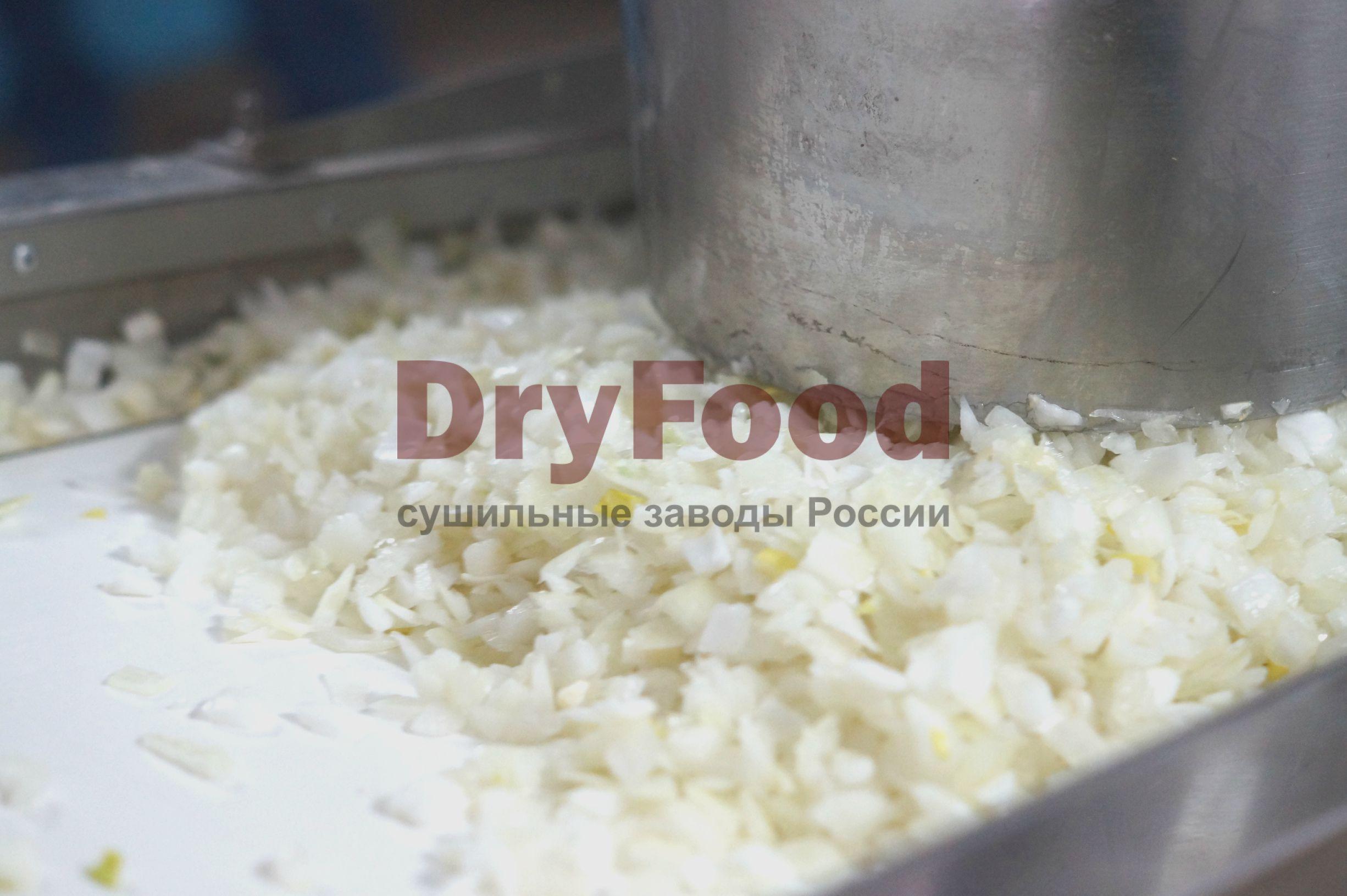 Производство сушеного лука