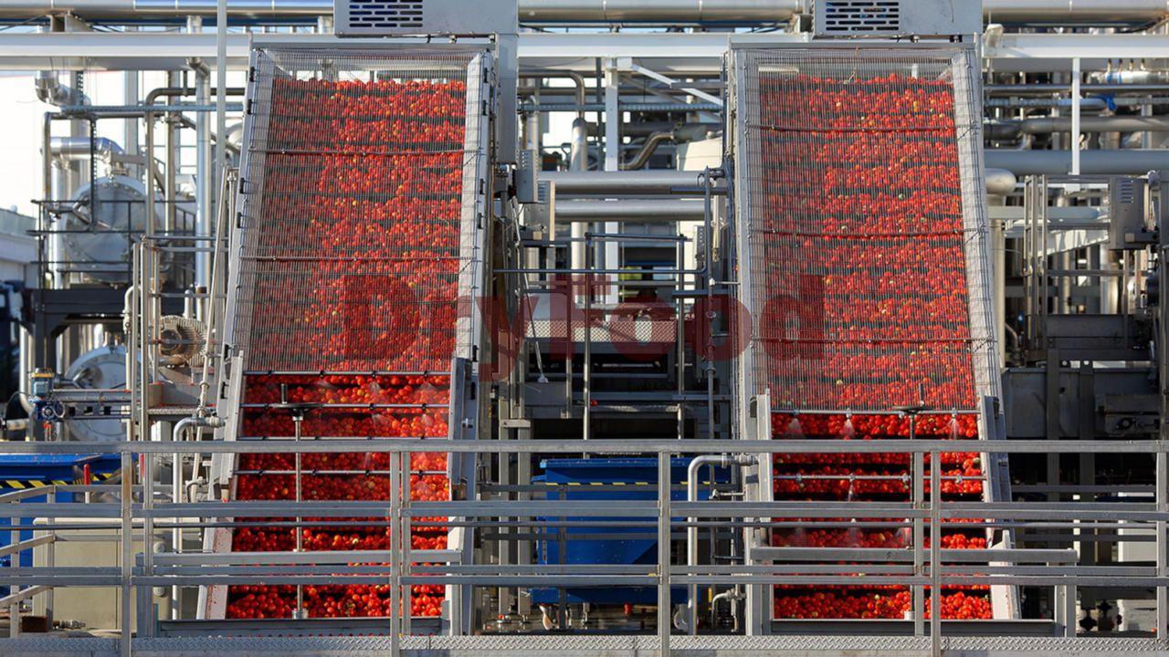 Оборудование для производства томатной пасты